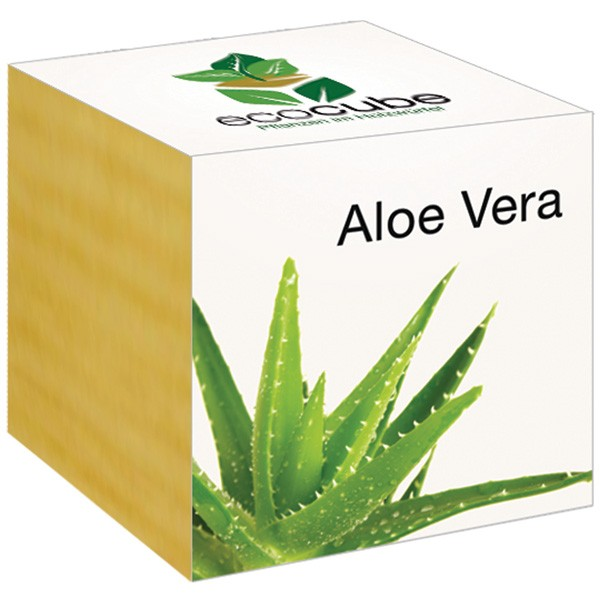 aloe vera im holzw rfel von ecocube. Black Bedroom Furniture Sets. Home Design Ideas